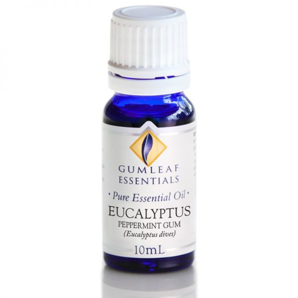 Eucalyptus Peppermint Gum Pure Essential Oil