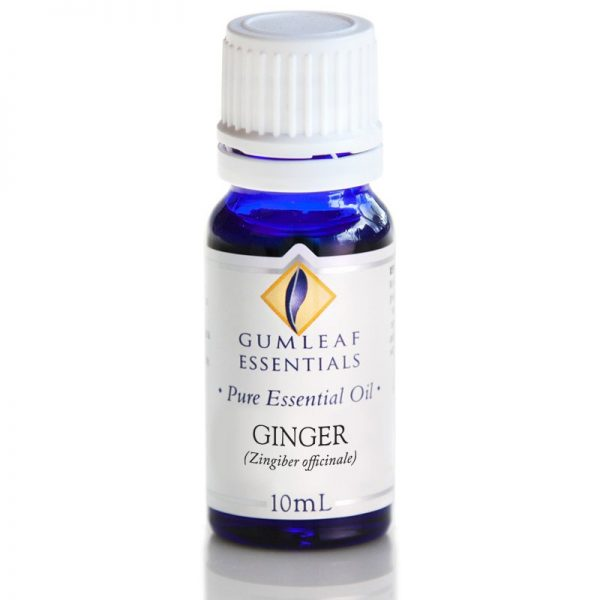 Ginger Pure Essential Oil