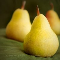 Candle - Simply Pillar - Pear