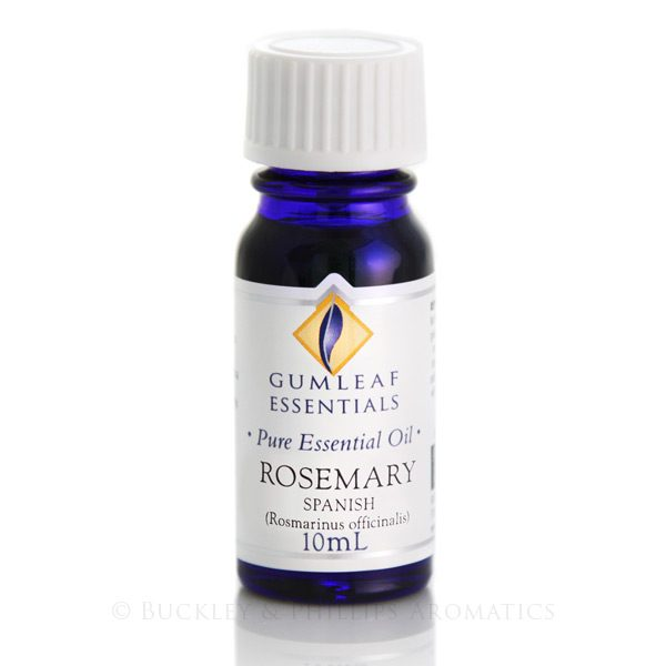 Pure Essential Oil - Rosemary - Spanish