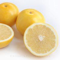 Pure Essential Oil - Grapefruit - Aust